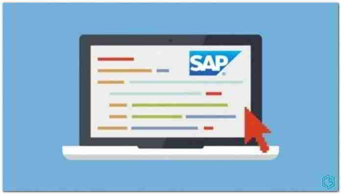 Usuario SAP